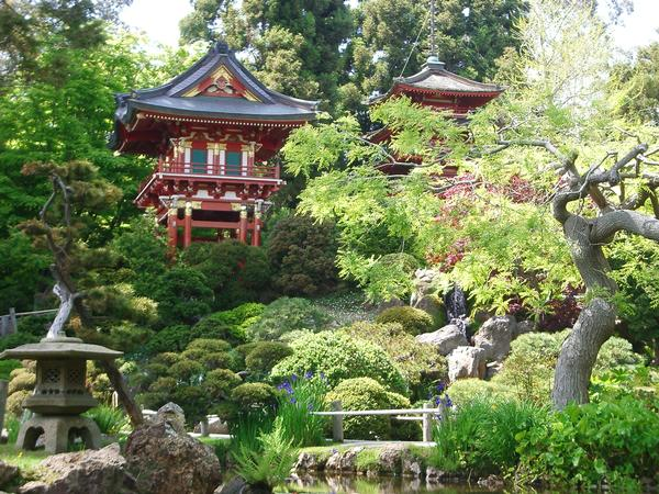 Ever after proposals blog golden proposal spots in san - Japanese tea garden san francisco ...